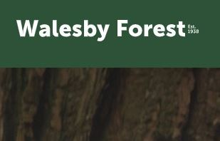 Walesby Forest