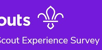 The Scout Experience Survey 2019
